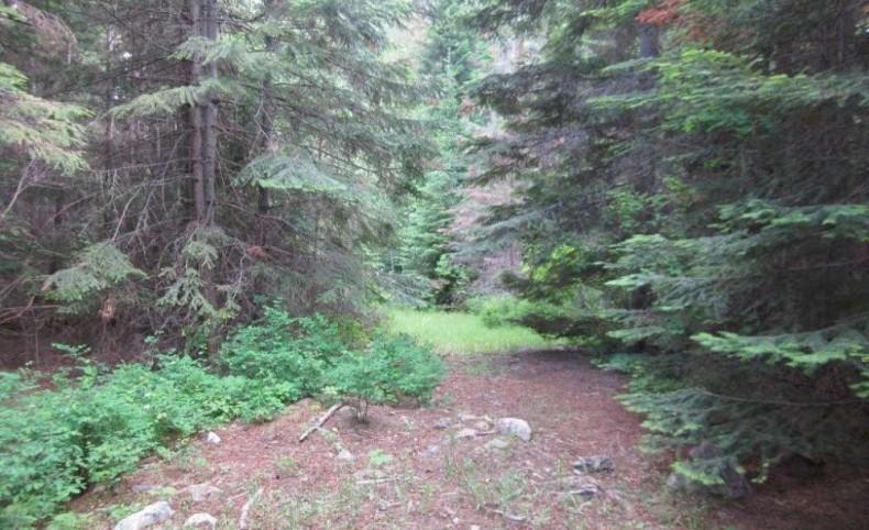 Kilbrennan Creek Property