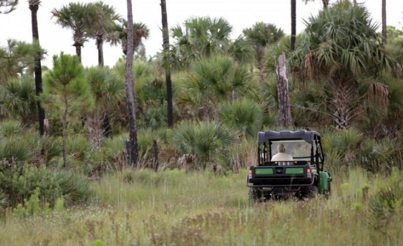 Lake Harney Recreation and Hunting