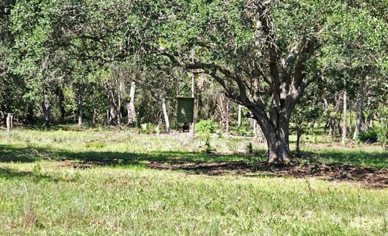 Pollywog Creek Ranch
