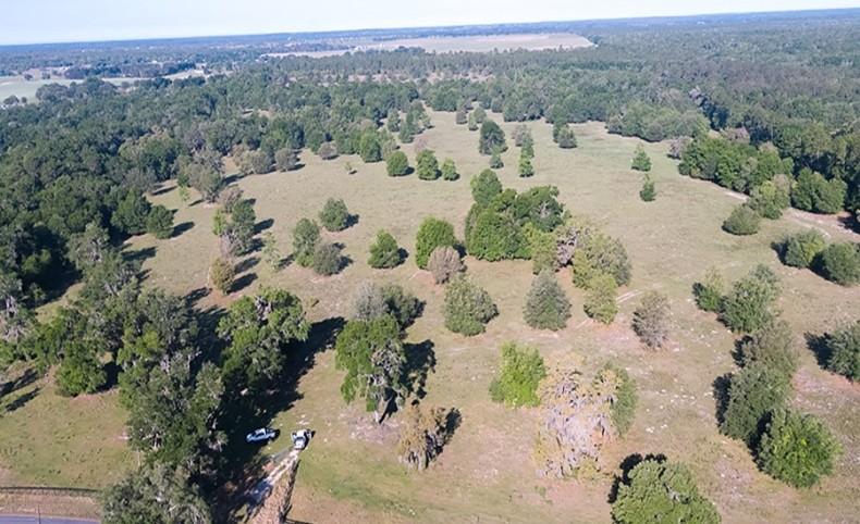 Early Bird Ranch in Ocala, Florida