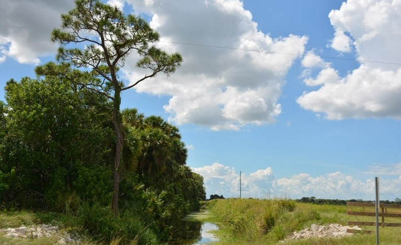 Header Canal Road