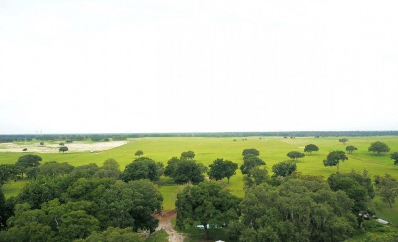 Long Hammock Ranch