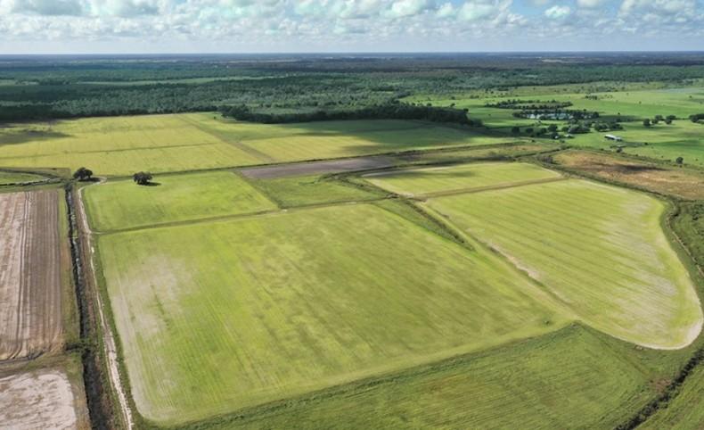 Clay Gully Farm & Ranch