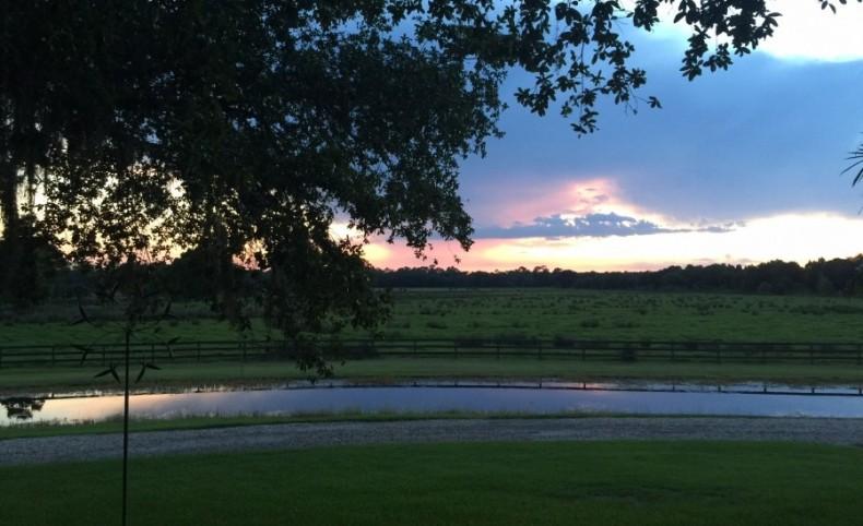 Asana Ranch at Lake Hatchineha