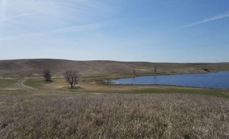 640 acres CRP & Hunting Paradise Ward County ND
