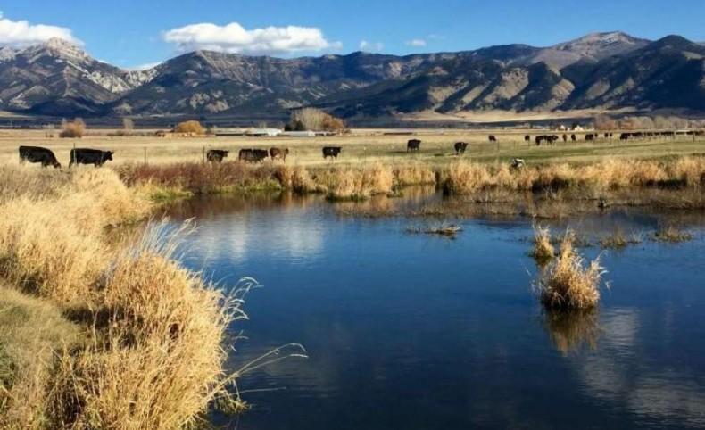 Trout Creek Ranch