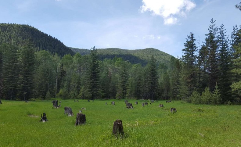 Clark Fork Solitude