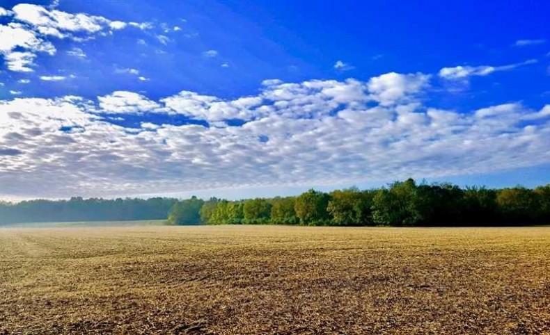 Anthony Rd - 188 acres - Montgomery County