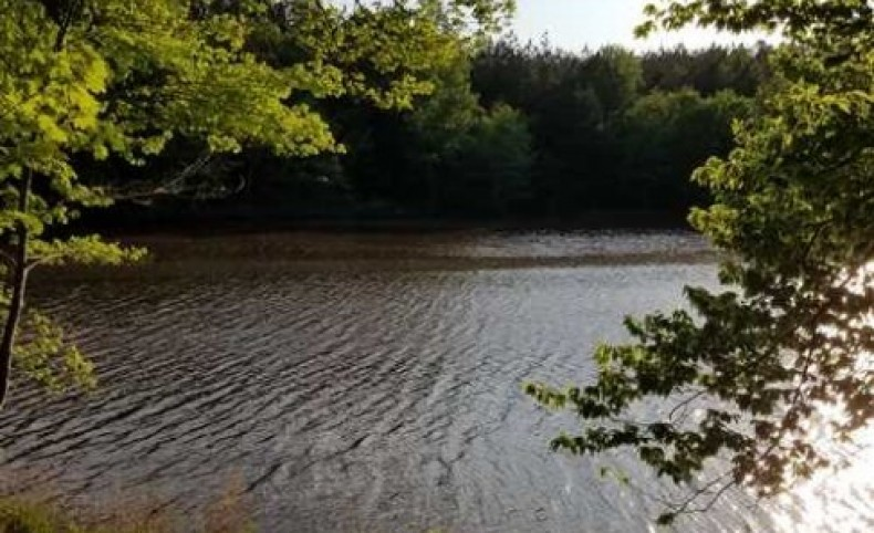 145+/- Acres Creekfront - Catawba, SC