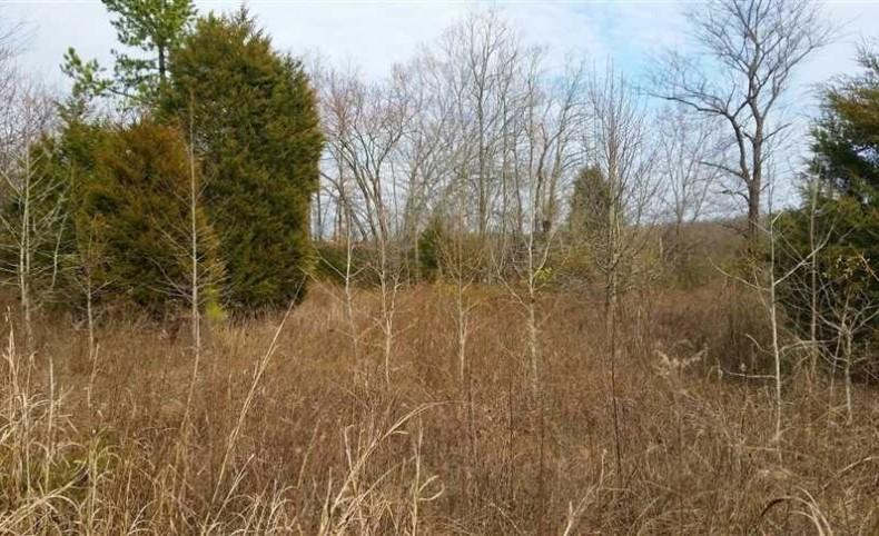 61 Acres in Lincolnton, Lincoln County