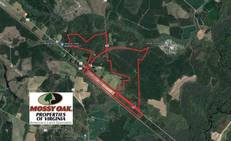 188 Acres Recreational and Investment Land For Sale in Southampton County VA!