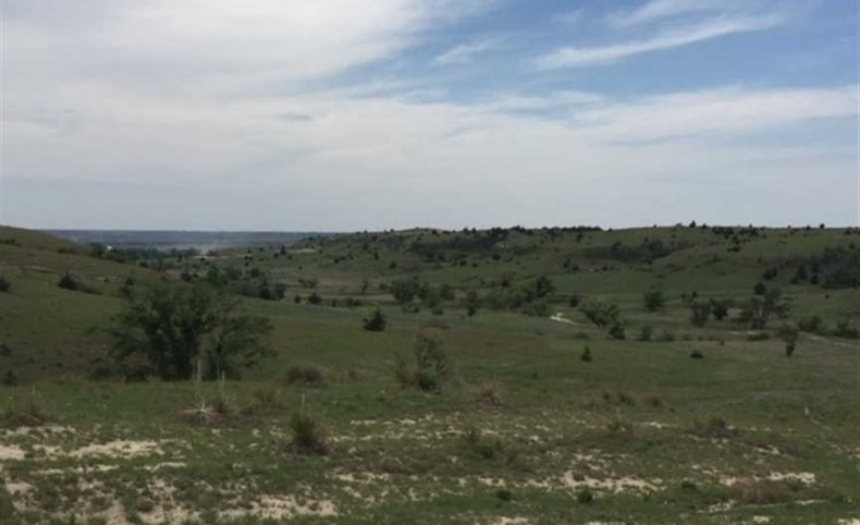400 +/- acres of pasture and hunting with oil income