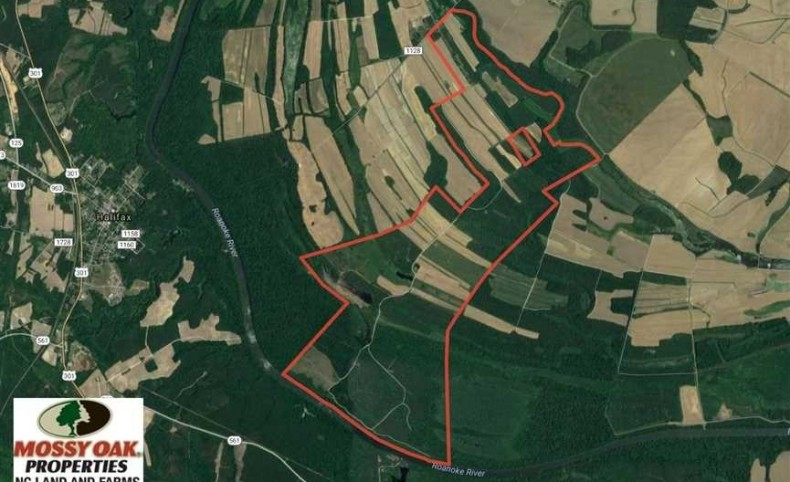 REDUCED! 1407 Acres of Farm and Hunting Land For Sale in Northampton County NC!