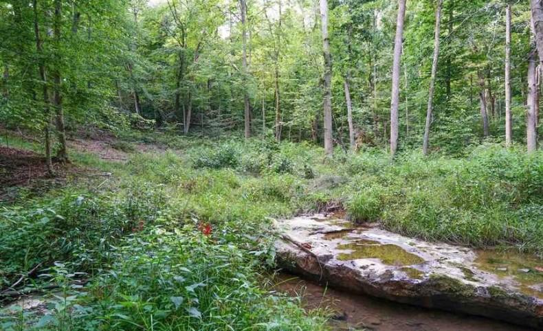 SR 678 - 171 acres - Hocking County