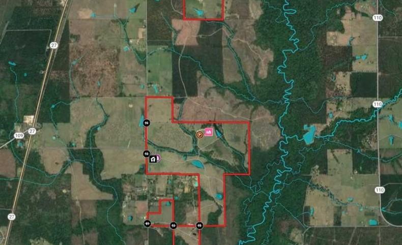 Smokey Cove Road Cattle Ranch, Beauregard Parish, 442 Acres +/-