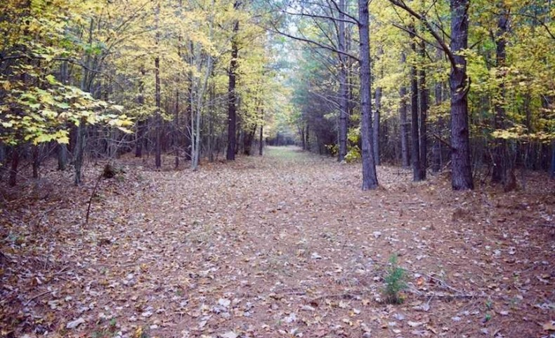238 Acres of Lakefront Residential Hunting and Recreational Land For Sale in Bedford County VA!