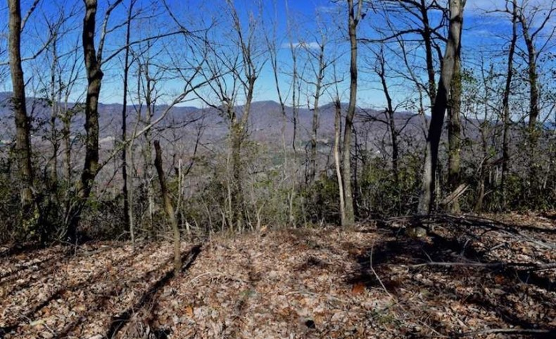 454 Acres of Hunting and Development Land For Sale in Patrick County VA!