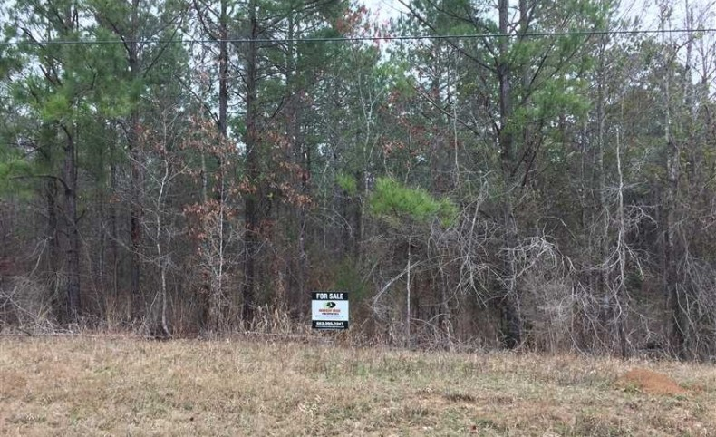 PINE PLANTATION - 189.33 +\- acres of prime pine land with good road frontage and water access