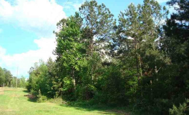 353.57 +/- Ac. Less than 15 min. from the new Brandon Amphitheater & Park. Timber, Hunting, Residential, & Farm Land, Rankin Co., MS, 39042.