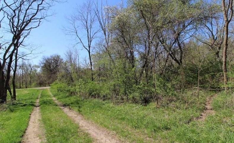 Shaw Rd - 88 acres - Medina County