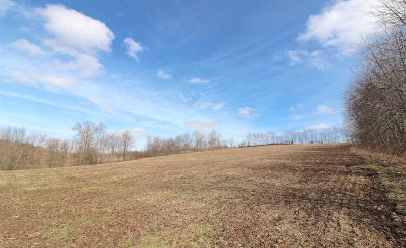 SR 643 - 80 acres - Coshocton County