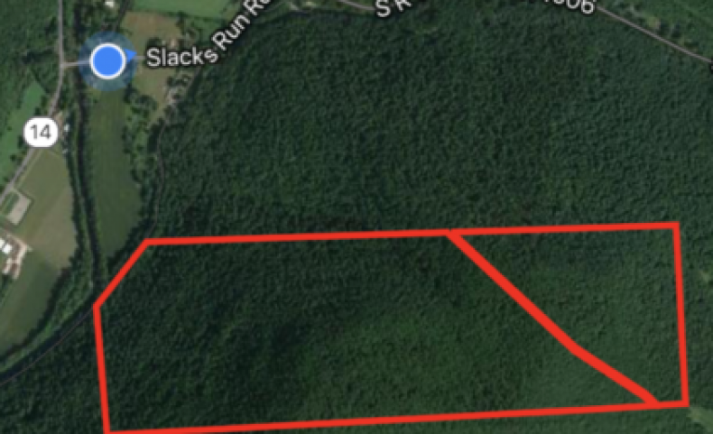 246.8 Acres in the Heart of Lycoming County