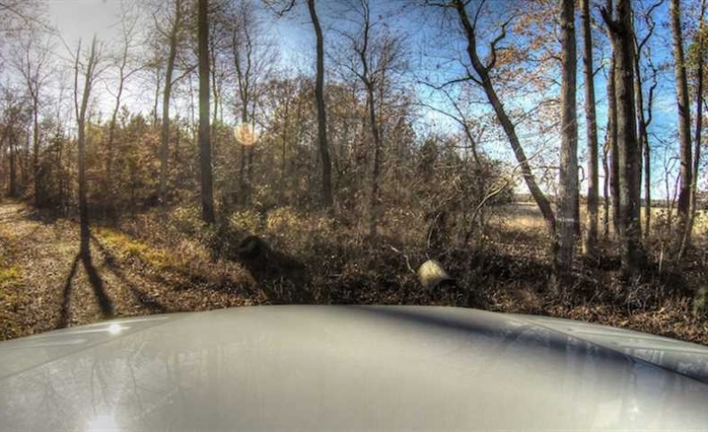 761 Acres of Hunting Land For Sale in Accomack County VA!