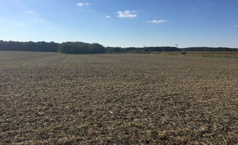 Recreational, Timber, and Cropland! 250 Acres, Vermilion County, Illinois