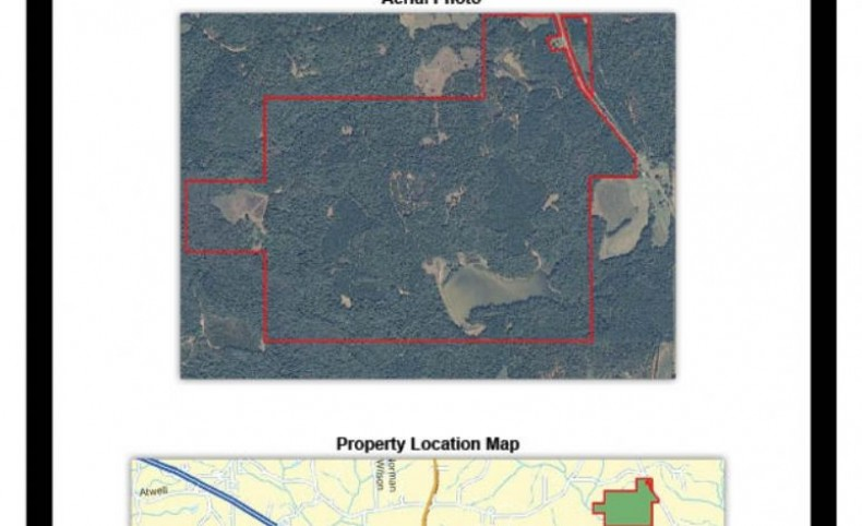 Hunting and Fishing Paradise! 571.6 Acres, Pike County, Alabama