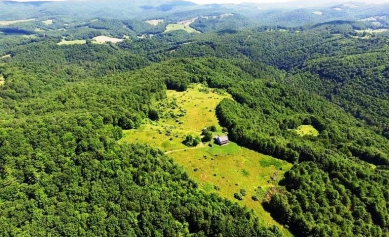 655-Acre Private Mountaintop Estate For Sale in Troutdale, Virginia