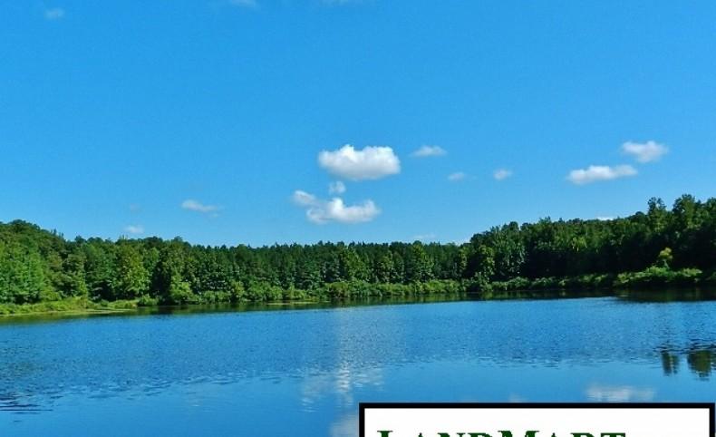 Reduced Price! - 18 AC Lake & Big Oaks Near Newnan