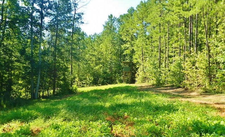 Reduced Price! - 18 AC Lake & Big Oaks Near Newnan