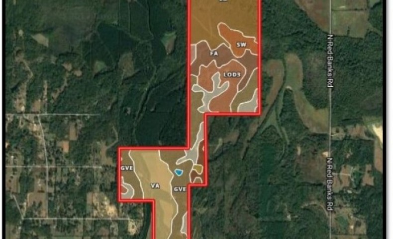 540 Acres in Marshall County in Red Banks, MS