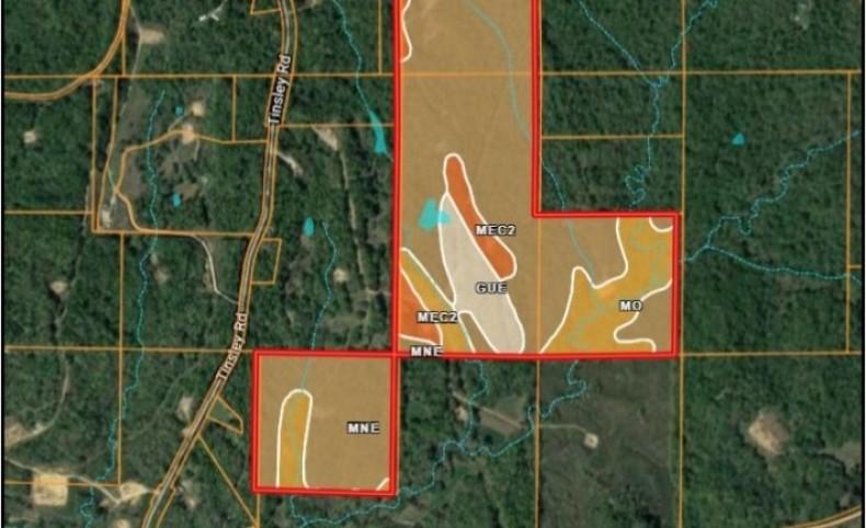 203 Acres in Yazoo County in Yazoo City, MS