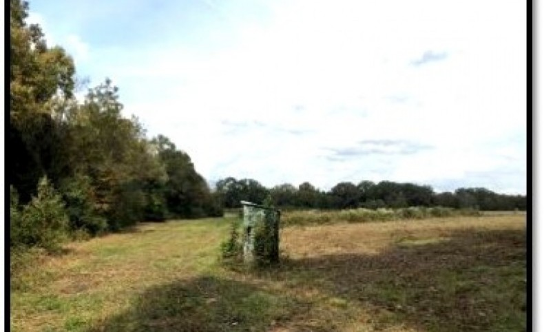 577.796 Acres in Hinds County in Terry, MS