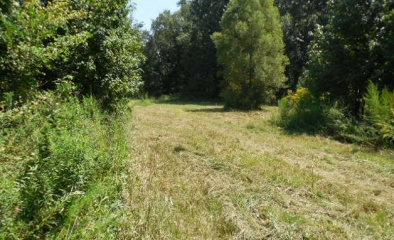 300 Acres in Hinds County in Raymond, MS