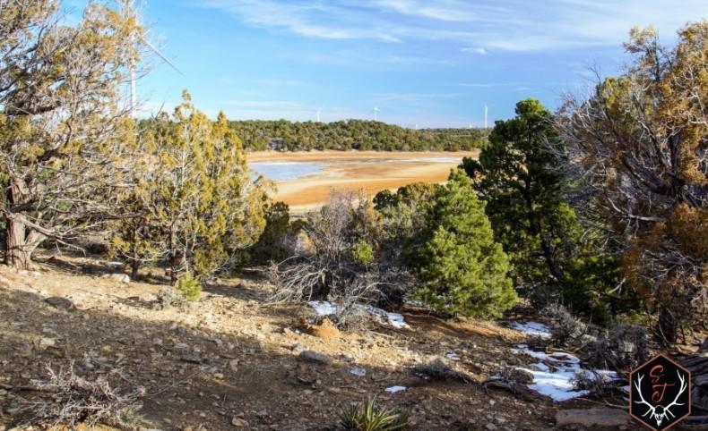 Carlisle Ranch