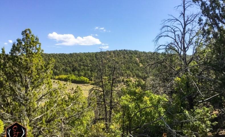 BP's Paunsaugunt Ranch