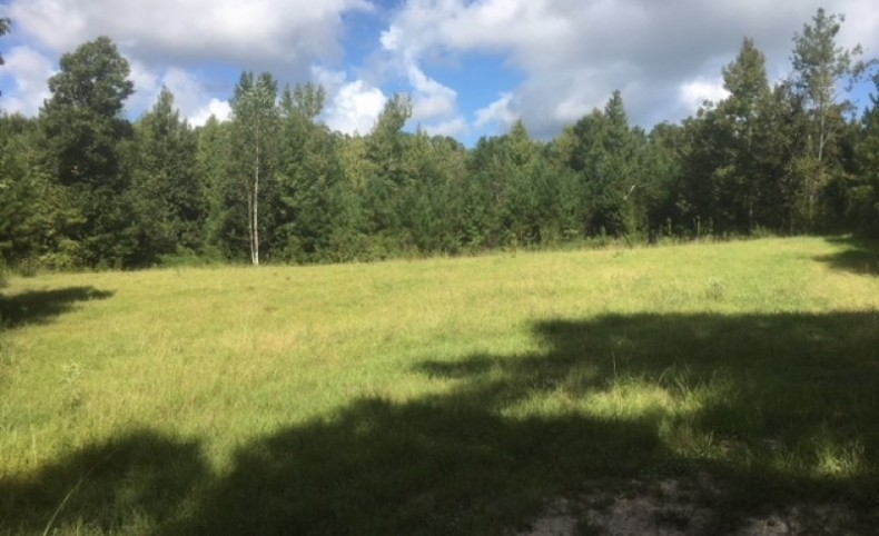 300 acres and Lodge Martinsville Road