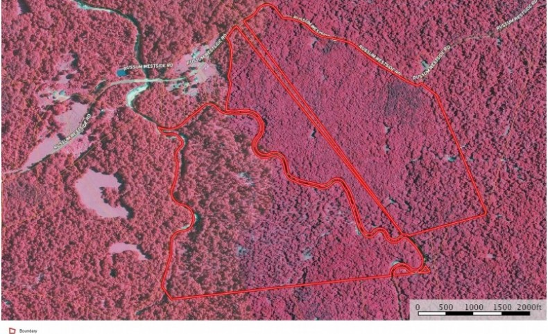 Claiborne County, MS 360 Acres Hardwood Timber Land for Sale