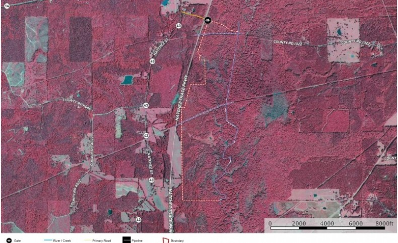 540.5 Acres Riverfront Land in Attala County MS