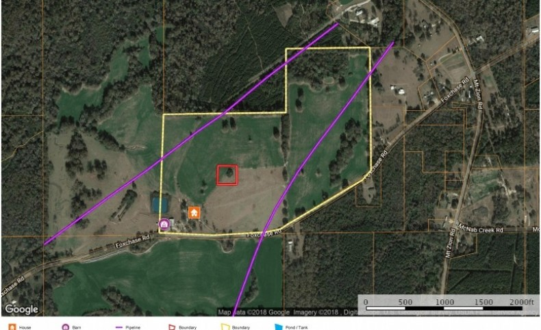 3 Bed, 2 Bath Home 76.6 Acres Pasture Land for Sale SW MS
