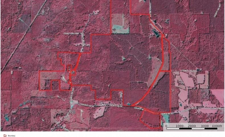 900 Acres Timberland/ Recreational Land, Camp Jasper Co MS