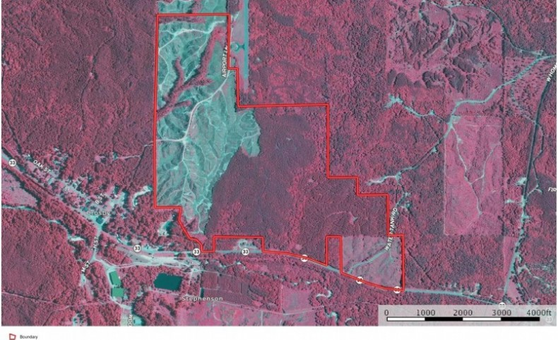 414 Acres SW MS Timberland Investment Hunting Land for Sale