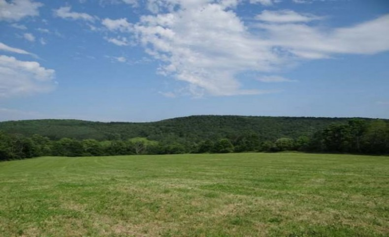 Large Country Acreage with Farmland Views & Stream