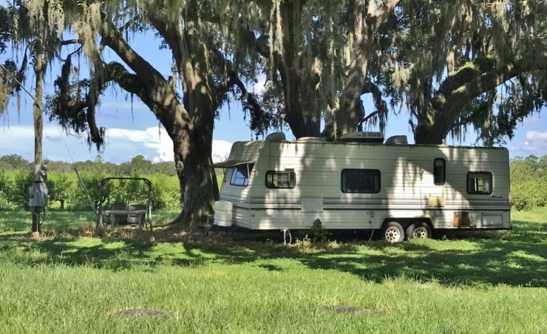 24 Acre Peach Grove in Bartow, FL