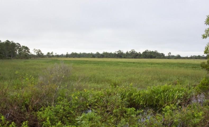 12,000 Acres The Durando Yeehaw Ranch
