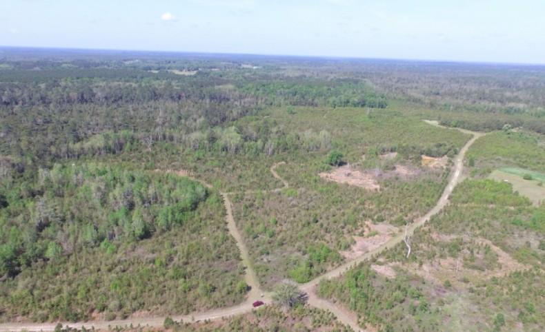 1,317 Acres - Madison, Florida