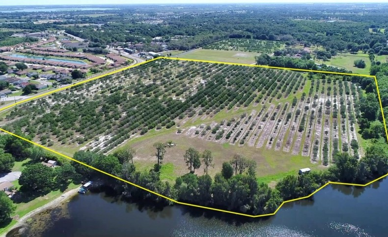40 ± Acres on Overlook Rd on Lake Florence