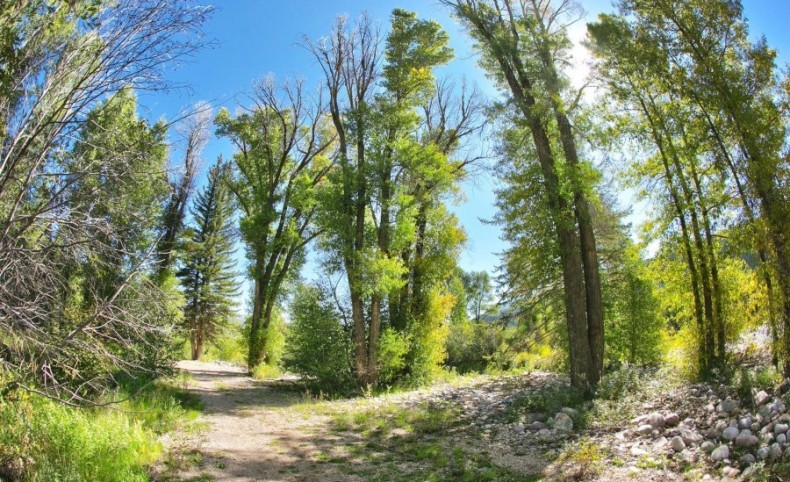River Parcel with Over 575 Feet of Frontage on the Weber River!